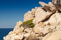 20110922_121108_Sardinien_1404.jpg